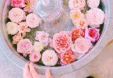 バラとともに癒しのひと時を♡滋賀県の「WABARA café」に行ってみたい♪