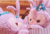【Disney】ダッフィのお友達「ステラルー」が登場♡あまりの可愛さに口コミ殺到!!