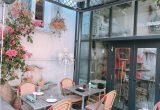 お花×カフェ!この時期にぴったりのカフェを紹介します!