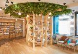18歳以上限定オトナのための次世代型マンガ喫茶「Hailey'5 Café」2017年8月3日(木)渋谷にオープン!