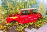 【滋賀県】自然豊かで贅沢な空間にあるフォトジェニックなカフェ特集♪